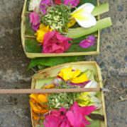 Balinese Offering Baskets Art Print