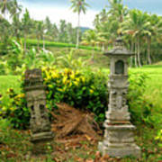 Balinese Rice Field Shrines Art Print