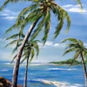 Balmy Breeze Art Print