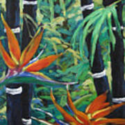 Bamboo And Birds Of Paradise Art Print