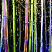 Bamboo Dreams #14 Art Print