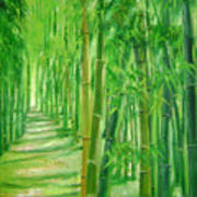 Bamboo Paths Art Print