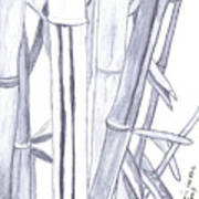 Bamboo Shade Art Print
