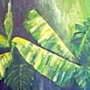 Banan Leaf Art Print