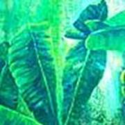 Banan Leaves 5 Art Print