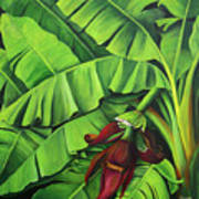 Banana Tree Flower Art Print