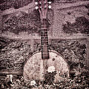 Banjo Mandolin On Garden Wall Print by Bill Cannon