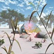 Baobabs Art Print