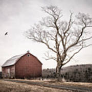 barn and tree - New York State Art Print
