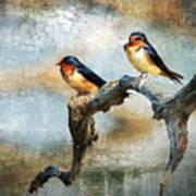 Barn Swallows Oil Art Print