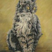 Barnhardt's Cat Art Print