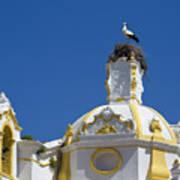 Baroque Church And Storks Nest Art Print