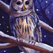 Barred Owl And Starry Sky Art Print