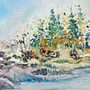 Barrier Bay Art Print
