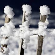 Barriere En Bois Recouverte De Neige Les Contamines Montjoie Haute Savoie Art Print