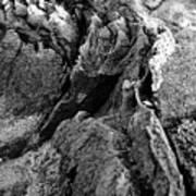 Basalt Textures Art Print