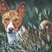 Basenji In Grass Art Print