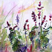Basil Culinary Herb Watercolor Art Print