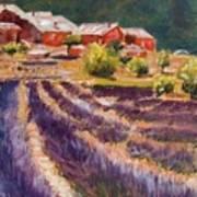 Lavender Smell Art Print