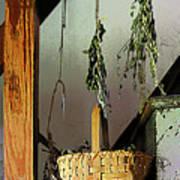 Basket And Drying Herbs Art Print