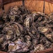 Basket Full Of Oysters Art Print