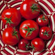 Basket Full Of Red Tomatoes  Art Print by Garry Gay