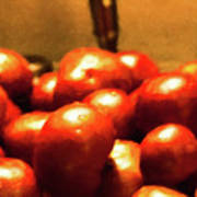 Basket Of Tomatoes M1 3309t2 - Photo Art Art Print