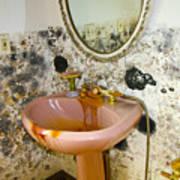 Bathroom Mold Art Print