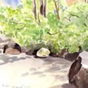 Battery Park City Cove Art Print