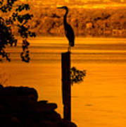 Bay At Sunrise - Heron Art Print