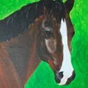 Bay Horse Art Print
