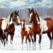 Bay Paint Horses In Winter Art Print