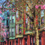 Bay Village Row Houses - Boston Art Print
