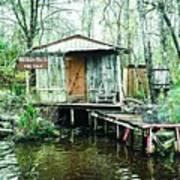 Bayou Cabin Art Print