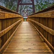 Bayou Foot Bridge Art Print
