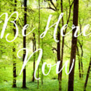 Be Here Now Green Forest In Spring Art Print