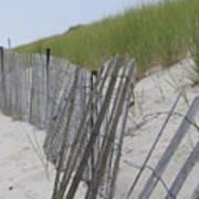Beach Border Art Print by Patricia M Shanahan