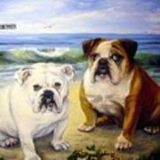 Beach Bullies Art Print