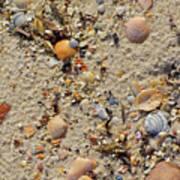 Beach Deposit Art Print