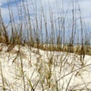 Beach Dunes Art Print