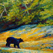 Beach Lunch - Black Bear Art Print