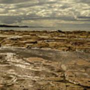 Beach Syd02 Art Print