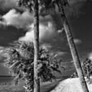 Beach Walk - Port Charlotte Beach Park, Florida Art Print