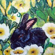 Bean The Magical Rabbit -pet Portrait Art Print