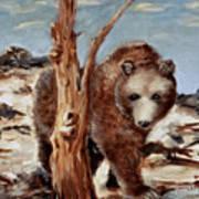 Bear And Stump Art Print