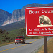 Bear Country In Montana Art Print