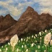 Bear Grass Bloom 2017 Art Print