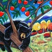Bear In The Apple Tree Art Print