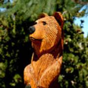 Bear In Woods Art Print