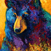 Bear Pause - Black Bear Art Print